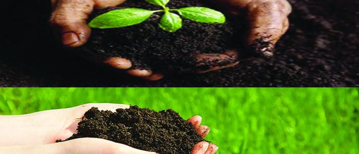 locandina-agronomimisura 10.1